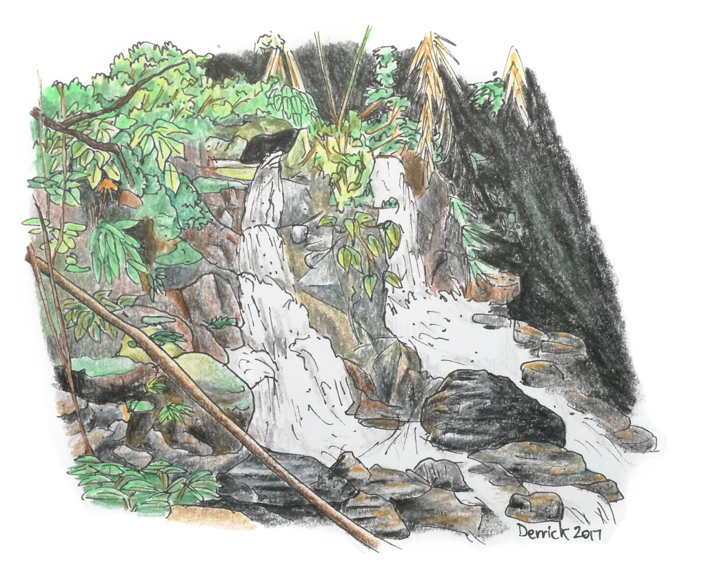 Sketch of a jubgle waterfall in Bako national park Malaysia