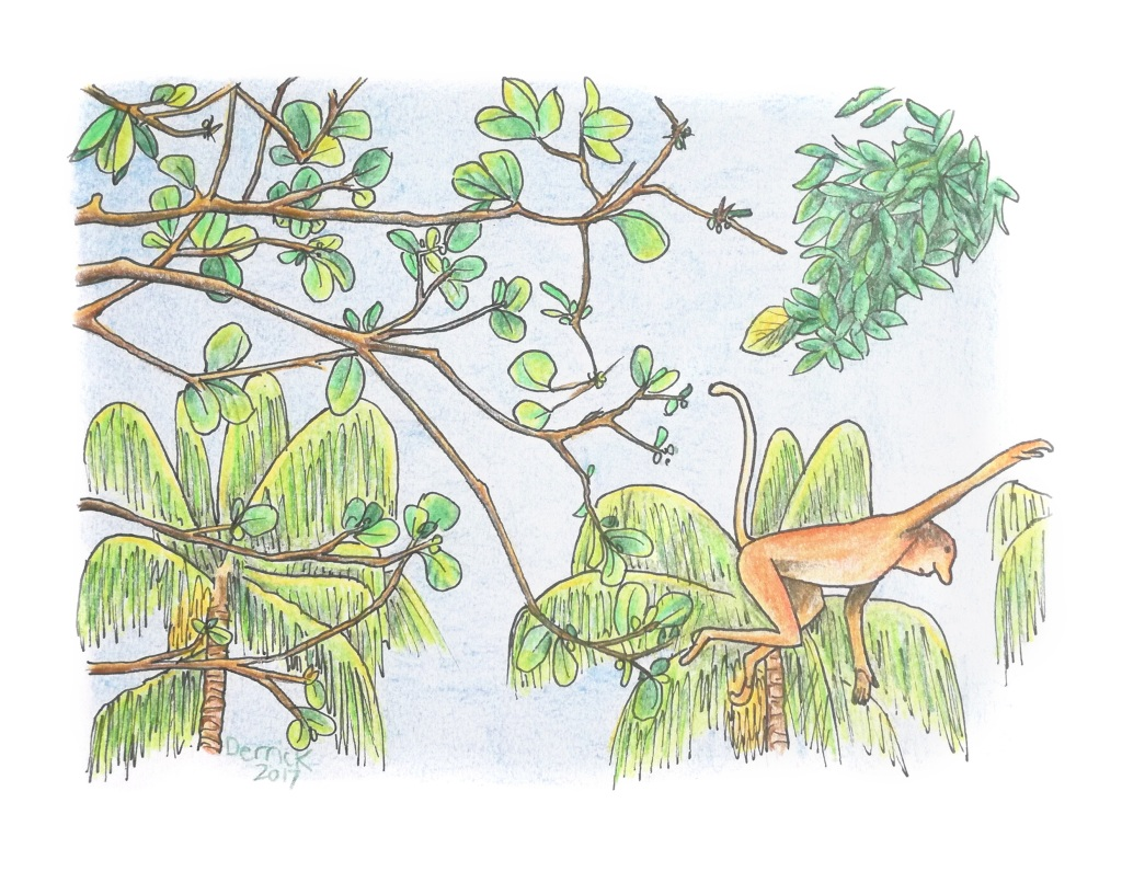 Sketch of an orange monkey jumping between trees