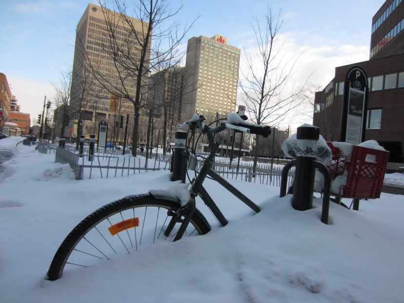 Experiencing snow for the first time inMontreal
