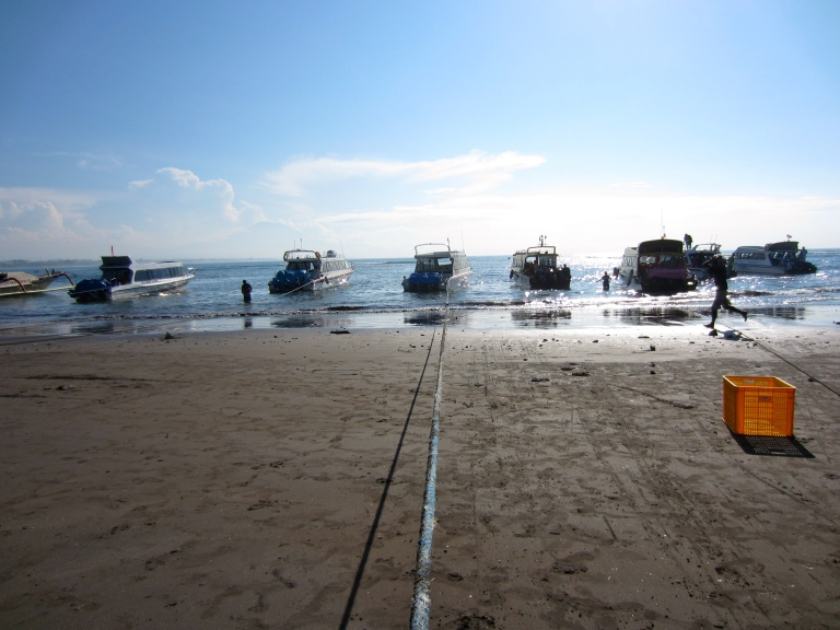 Small boats tied up at the beach
