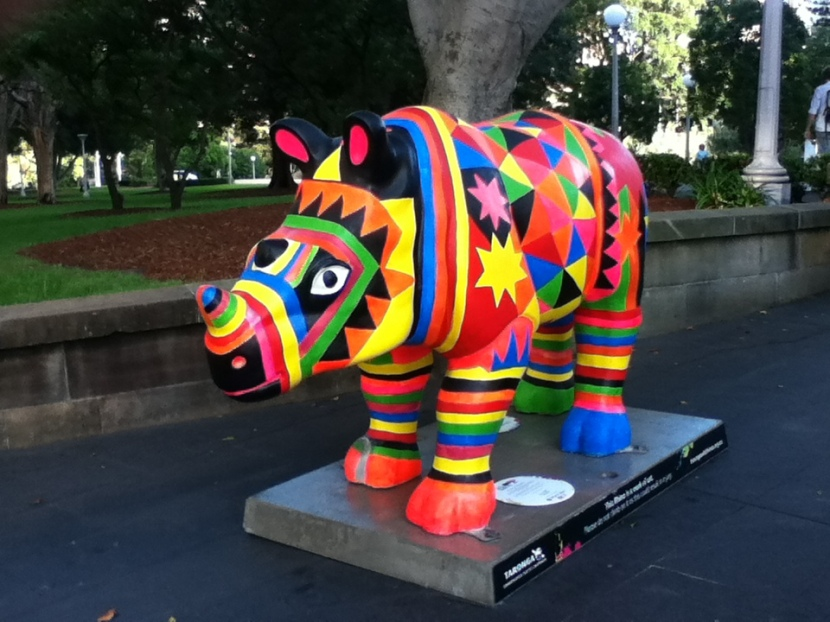 Tracking down the coloured rhinos in Sydney