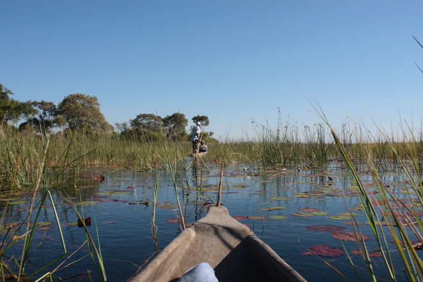Experiencing the Okavango Delta byboat