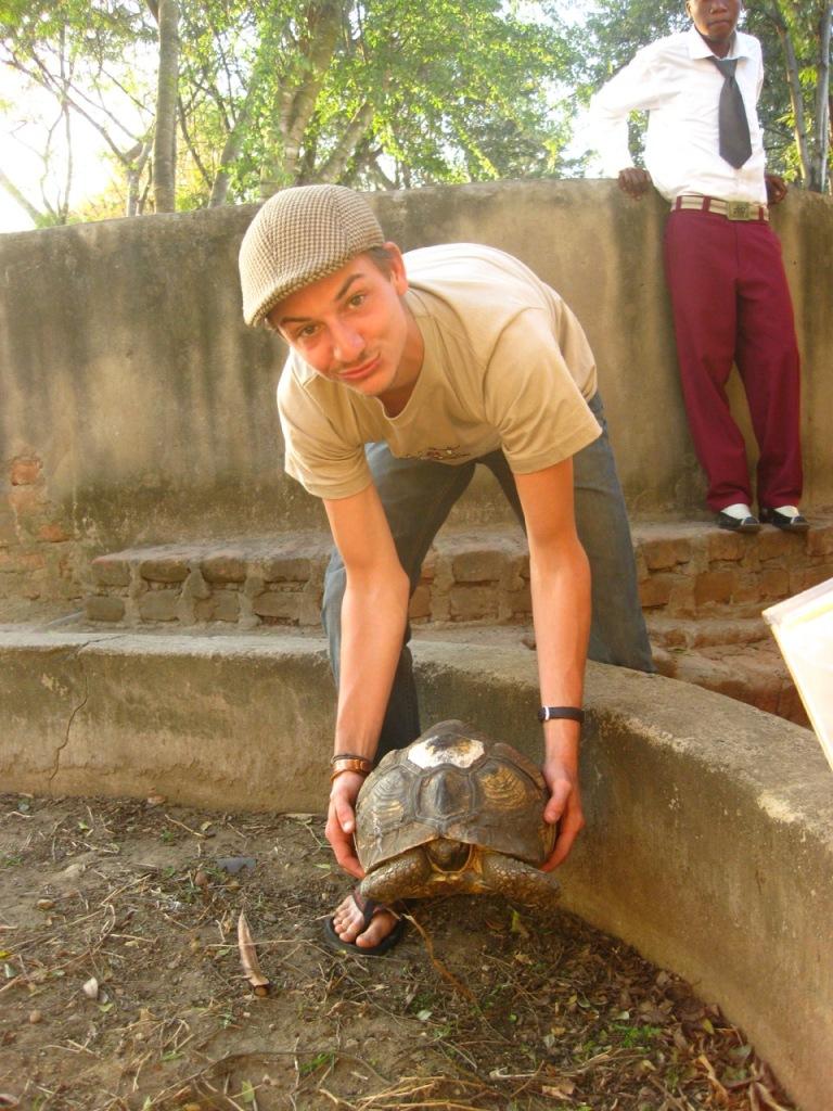 a tortoise in mikumi genesis snake park