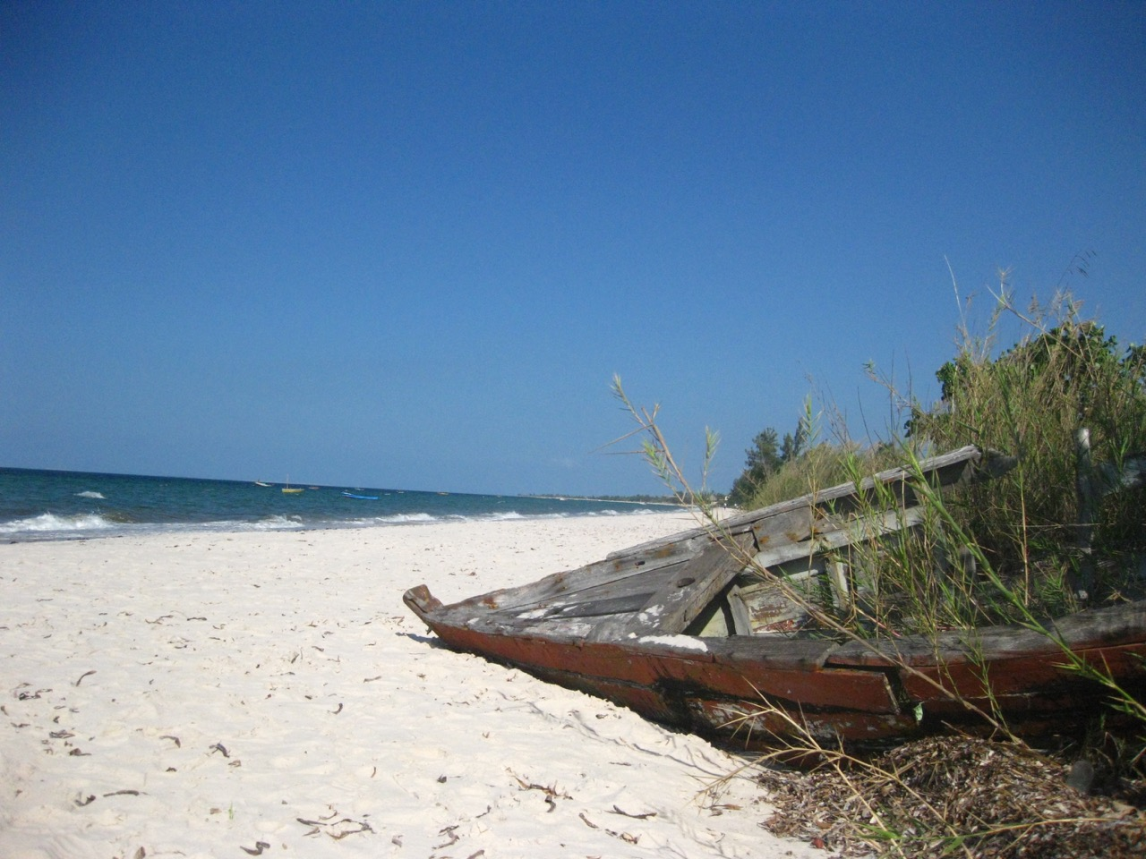 An old wooden boat covered in weeds on an african beach
