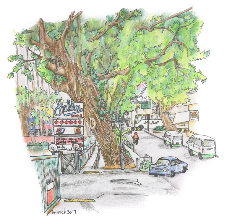 Sketch of a malaysian street with a huge tree growing from the sidewalk