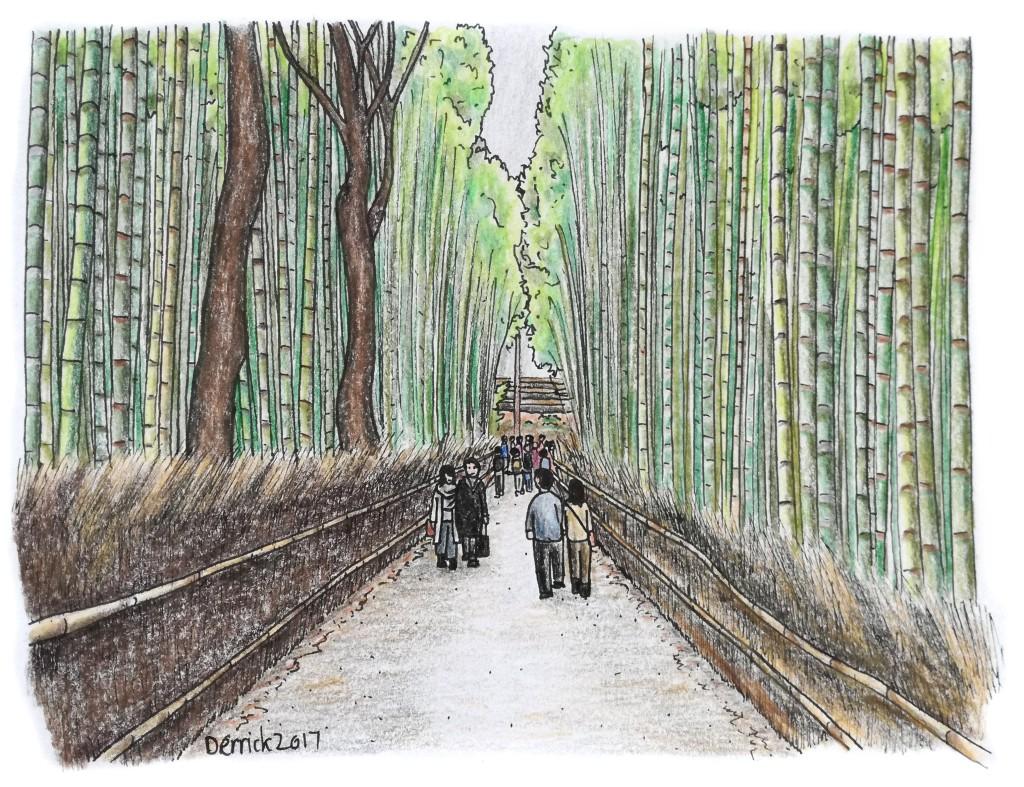 Drawing of the green bamboo forest at Arashiyama