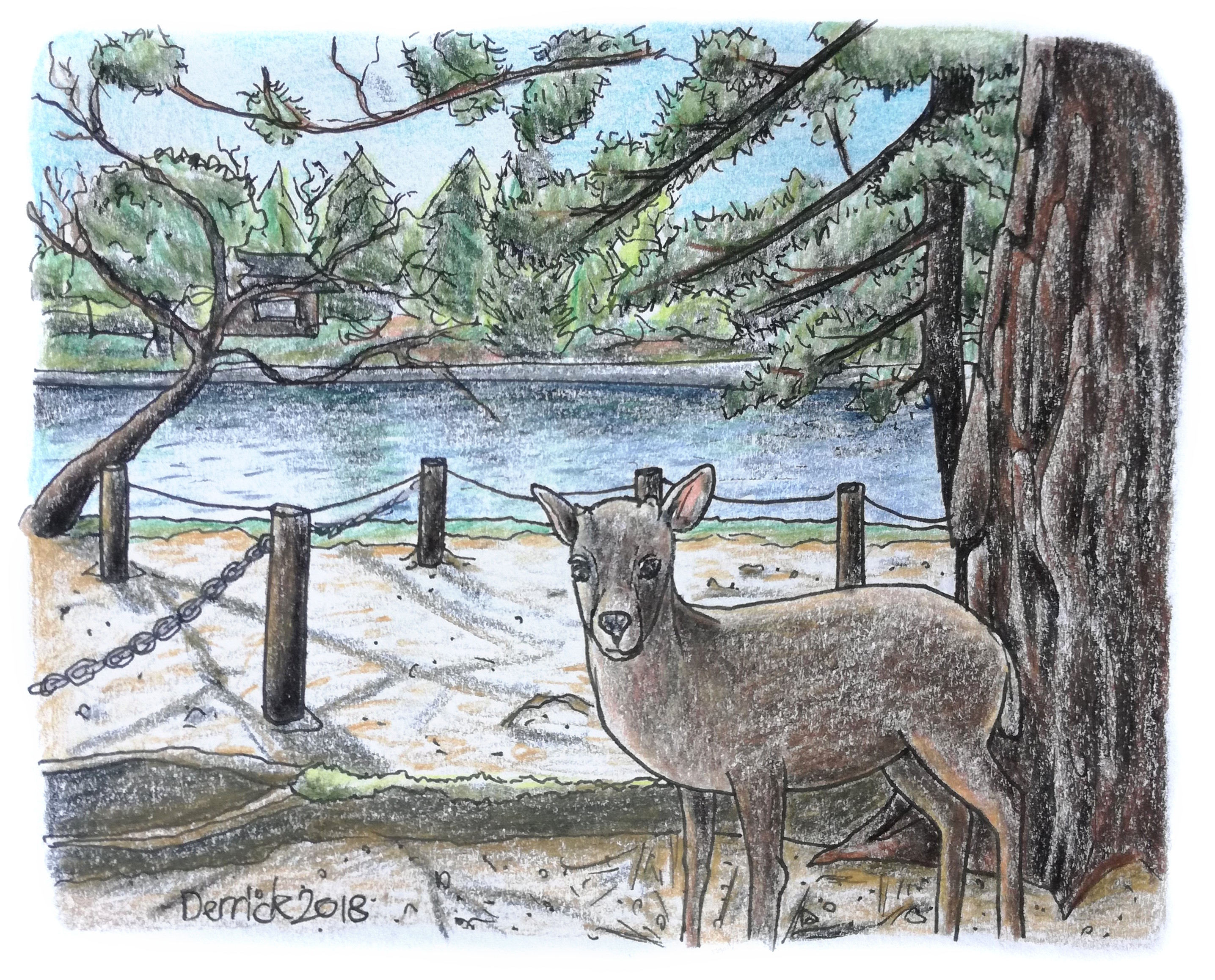 Sketch of a Nara deer