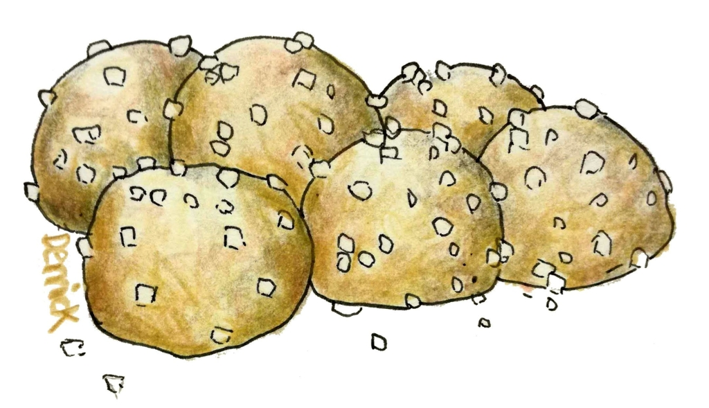 sketch of pastry balls covered in sugar