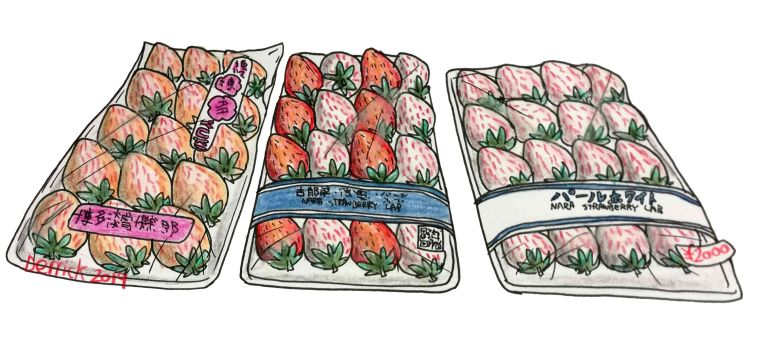 drawing of three packets of white and red strawberries