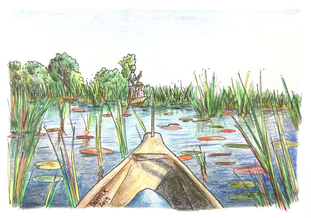 A mokoro canoe on the okavango delta
