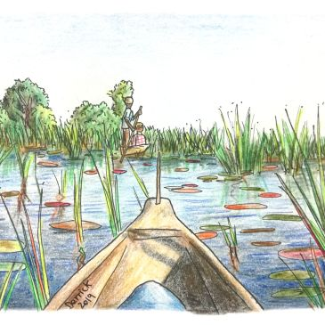 A mokoro canoe on the okavango delta