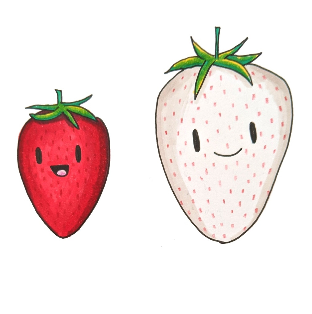 かわいいイチゴ 日本の白いイチゴ 漫画 コピックマーカー
