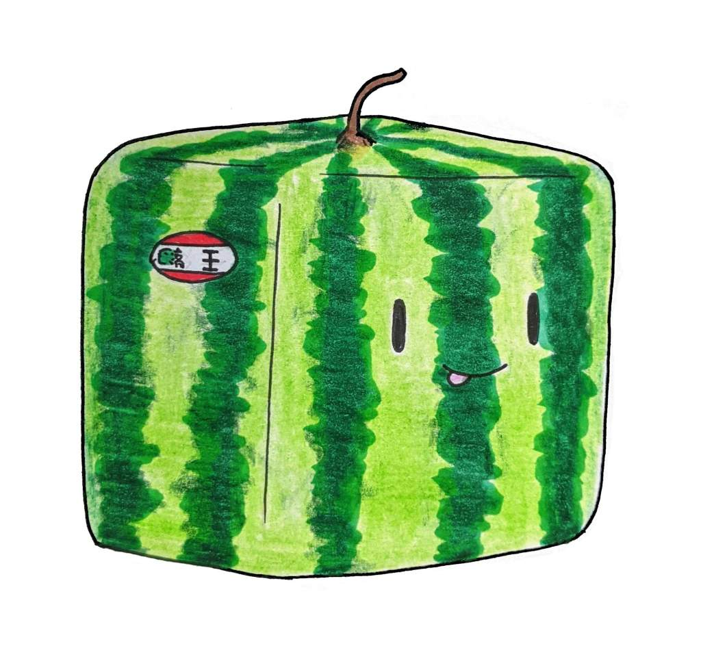 Kawaii square watermelon Japanese expensive fruit cute