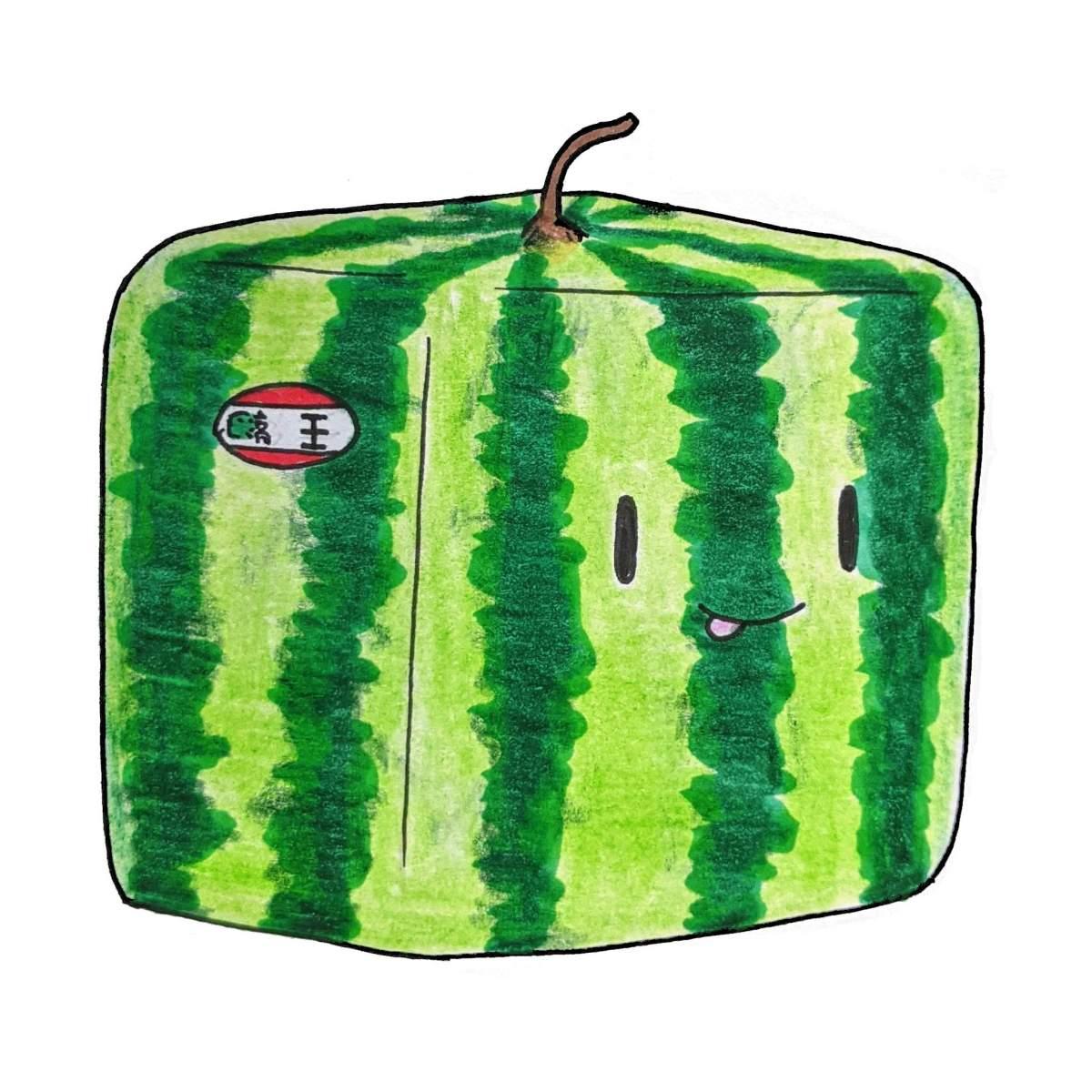 Kawaii square watermelon Japanese expensive fruit cute