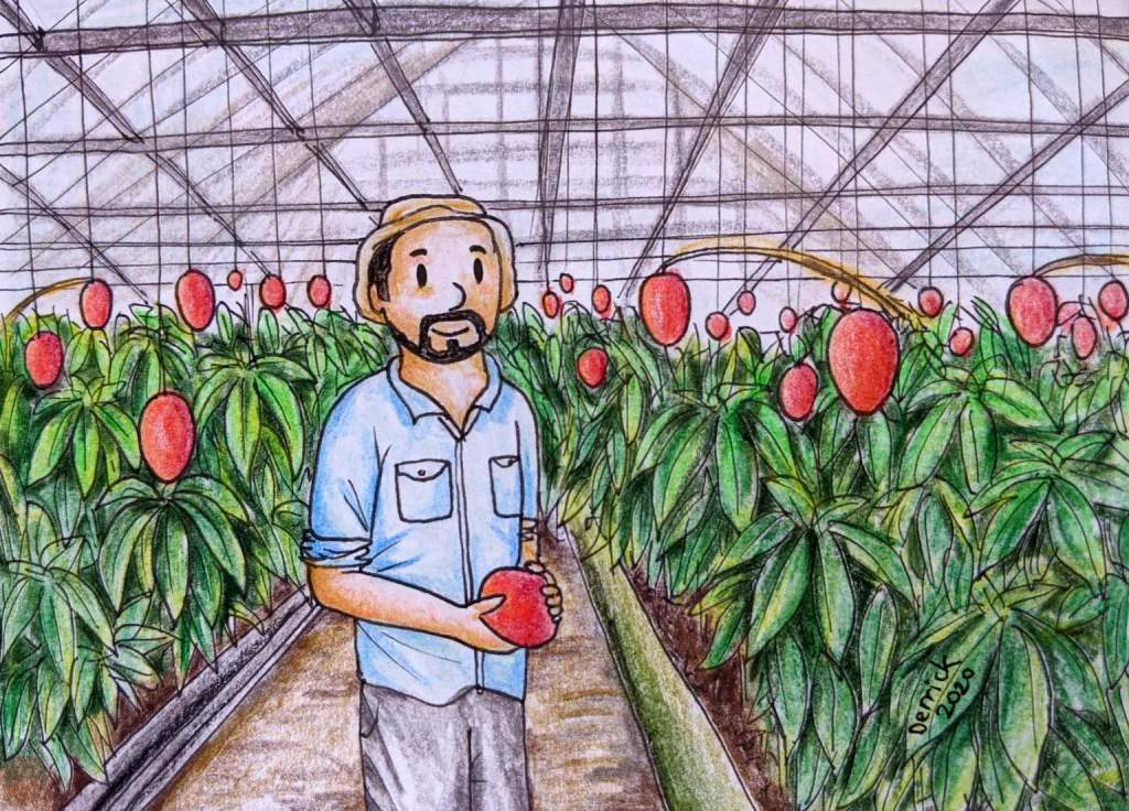 Miyazaki Mango farm cute cartoon japanese farmer holding a mango in a greenhouse