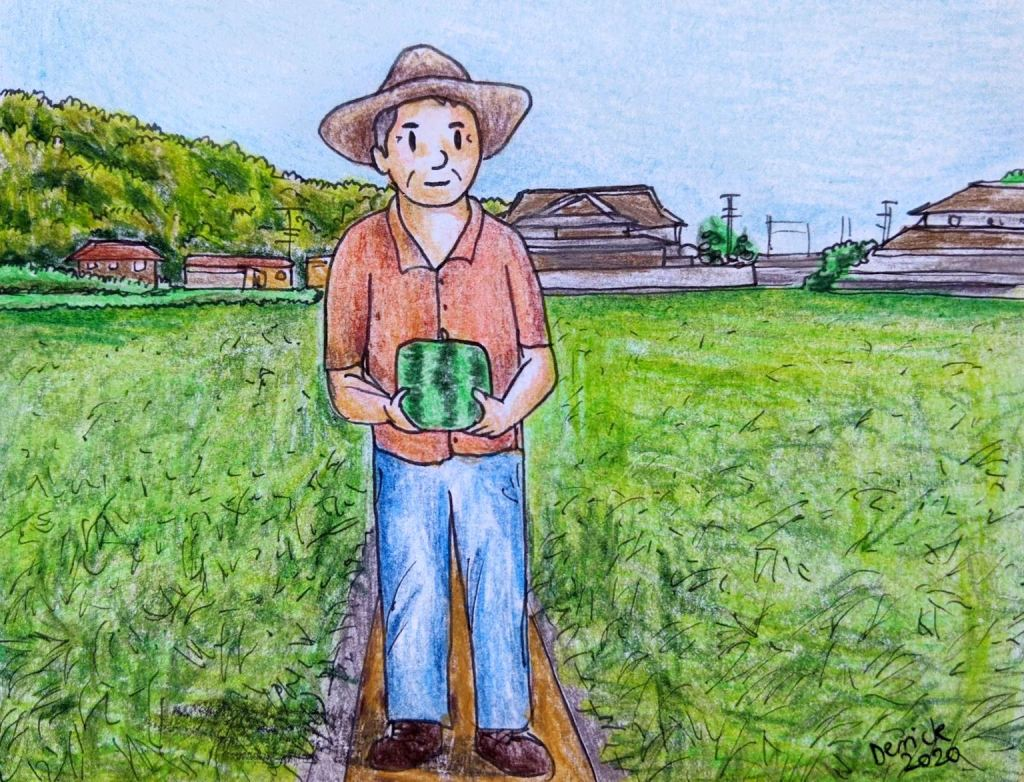 Japan square watermelon farm farmer holding a fruit