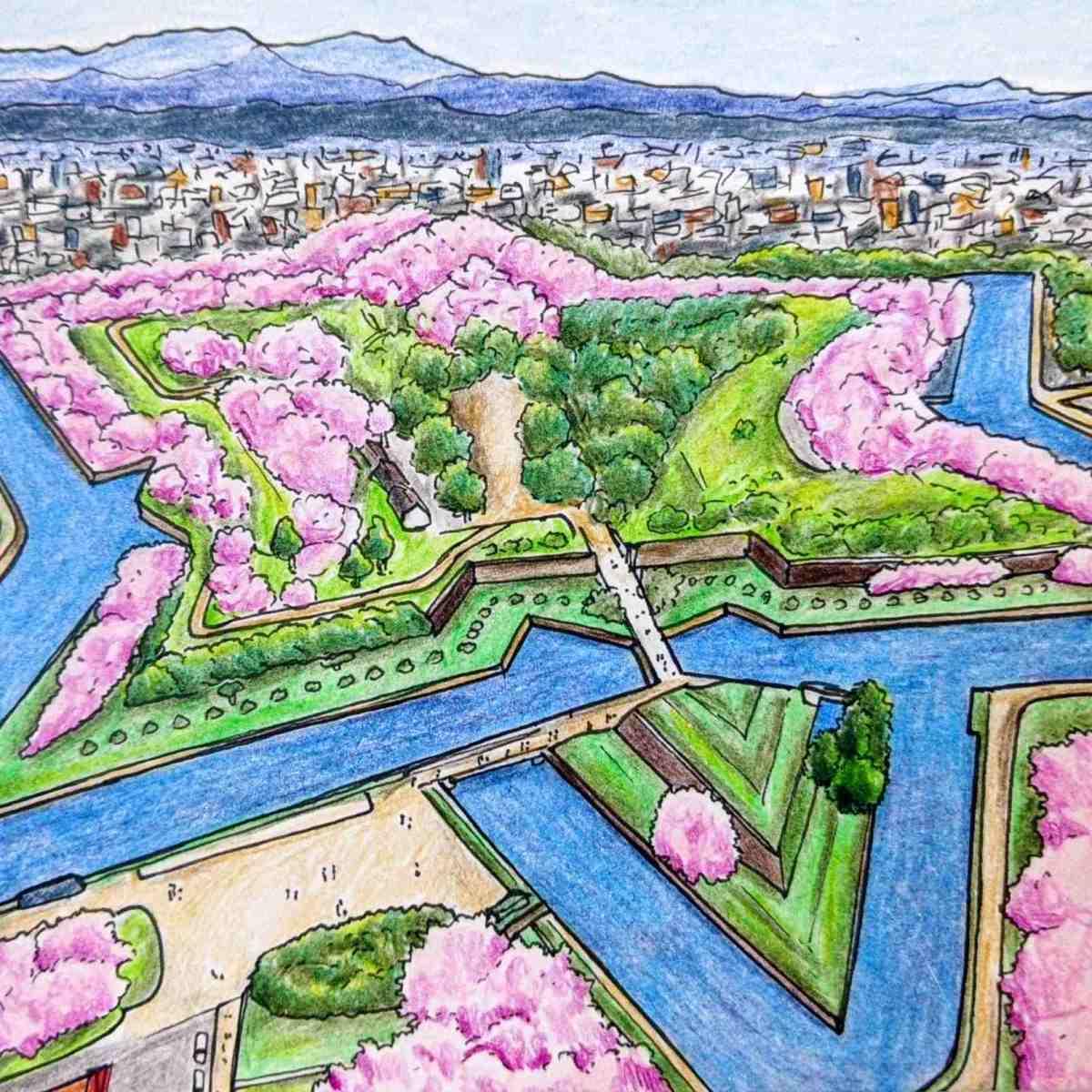 Drawing of fort Goryokaku in Hakodate aerial view in cherry blossom season