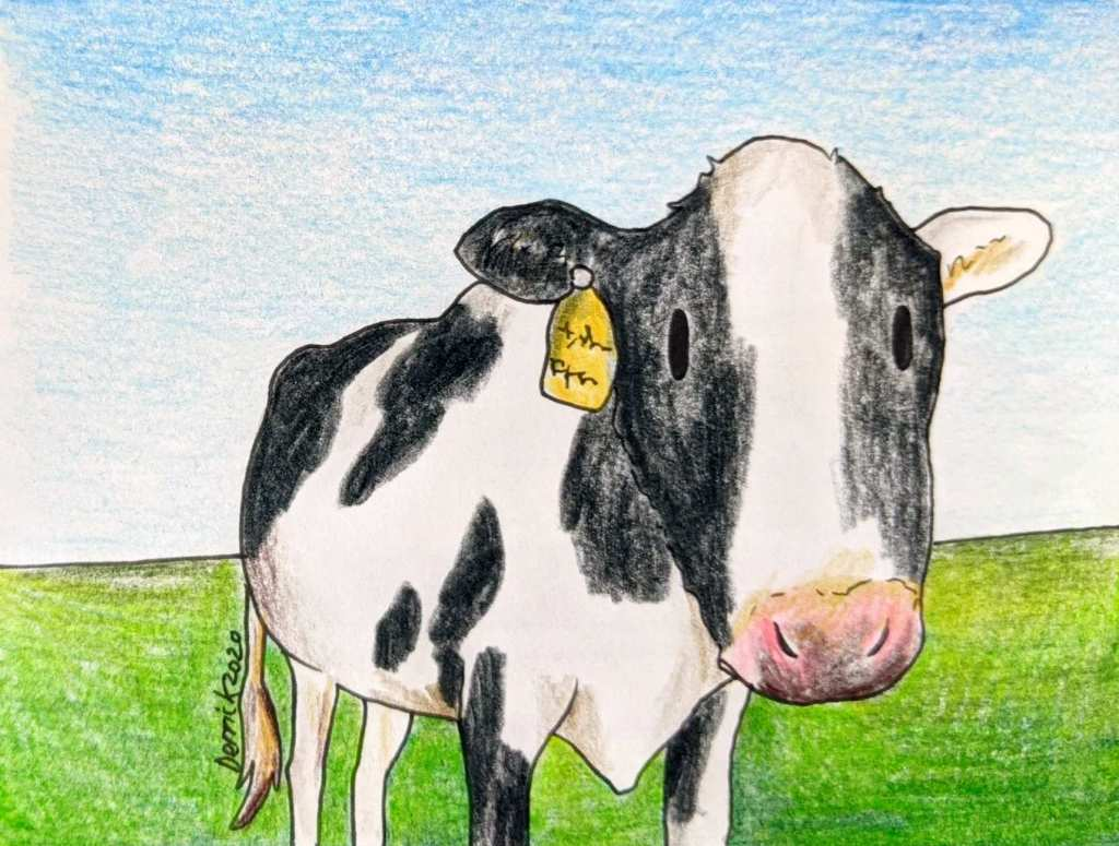 Drawing of a japanese cow standing in a field in Hokkaido