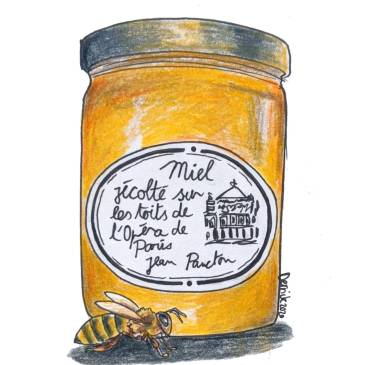 Drawing of a jar of paris honey made on the rooftops of Paris